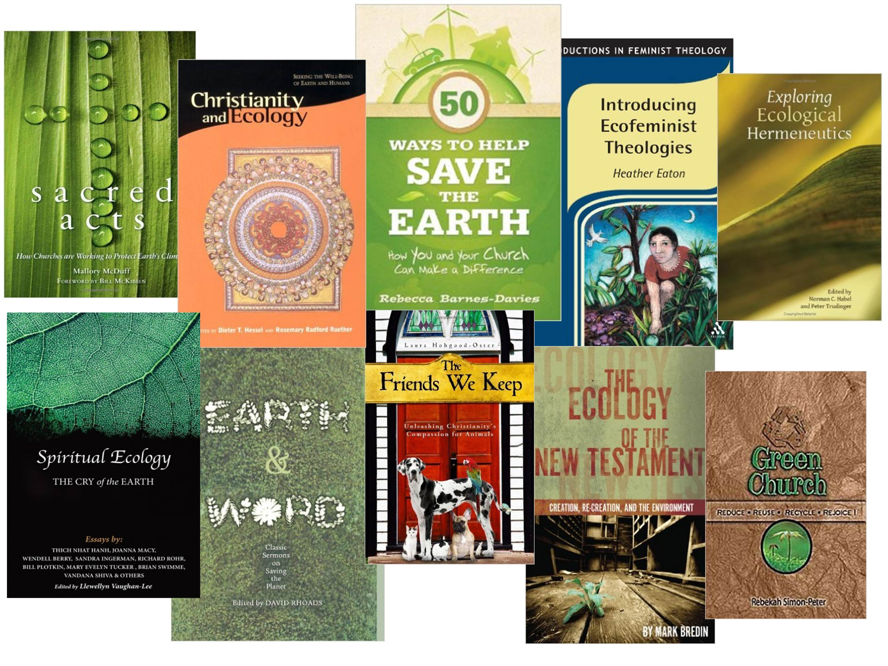earth day books in the Phillips Library